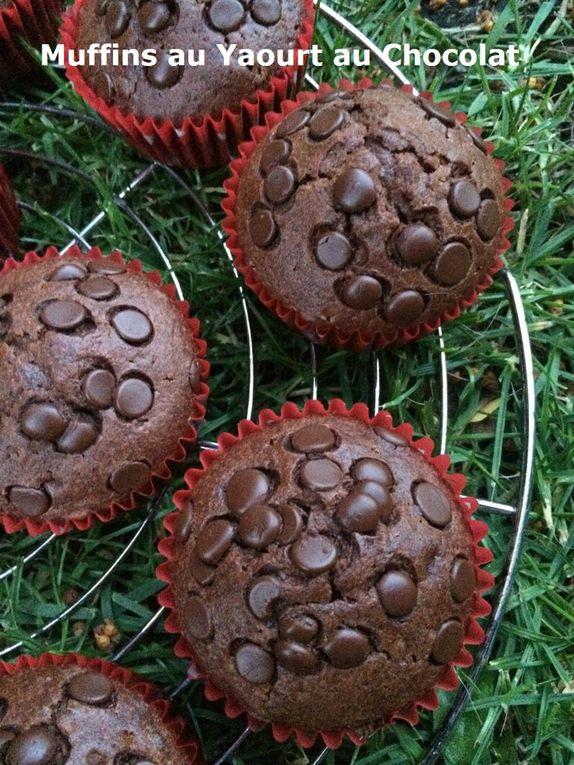 Muffins au Yaourt au Chocolat