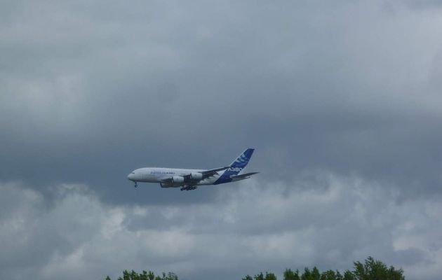 A380 AIRBUS LIVERY