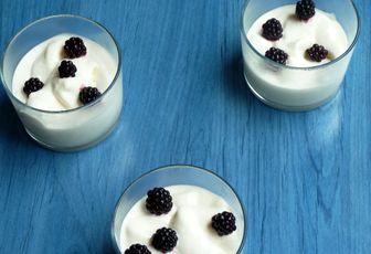 Yaourt glacé au miel  (Frozen yogurt)