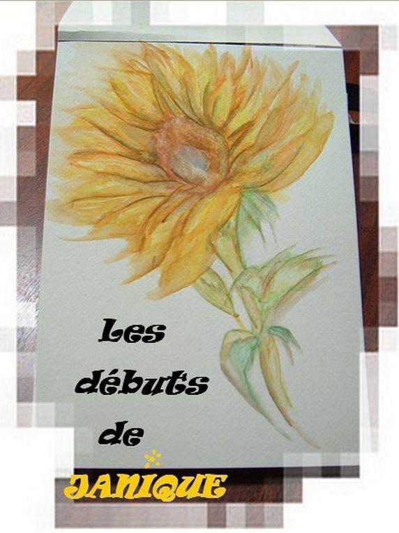 Album - N°5/2013®