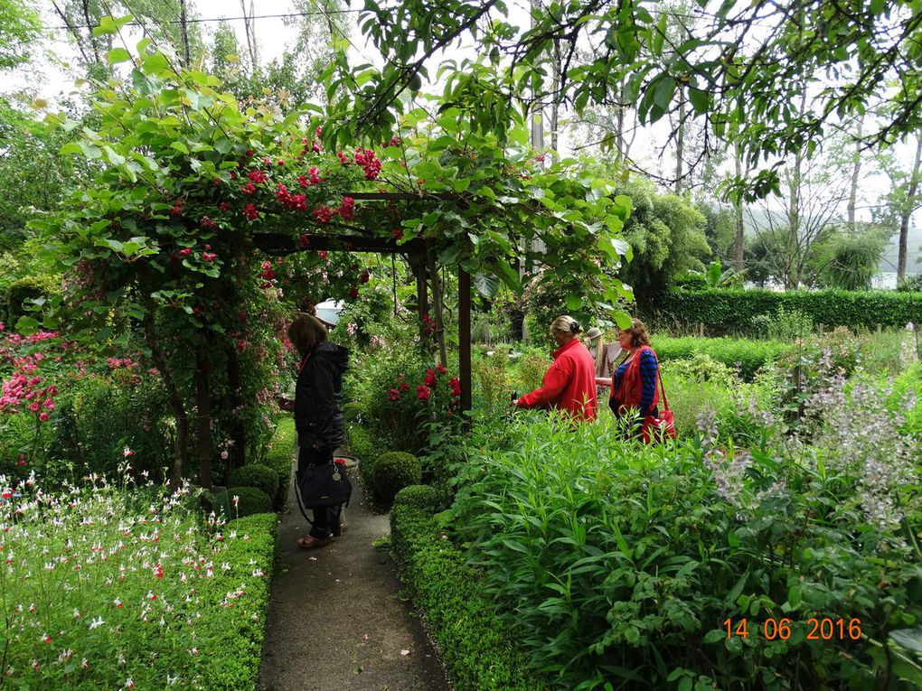 Le jardin d'Ingrid ....