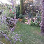 Visite commentée du jardin.