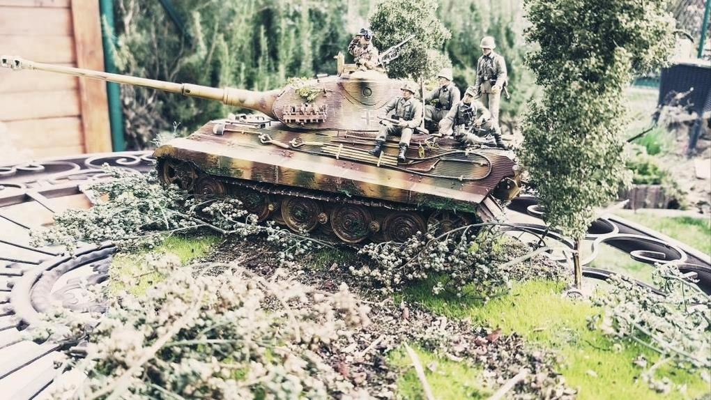 Tigre Royal en Normandie  (1/35 - par Patrick G.)