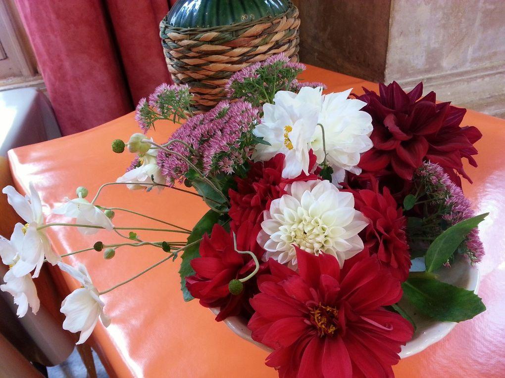 Album - Fleurs et fruits d'automne 2013