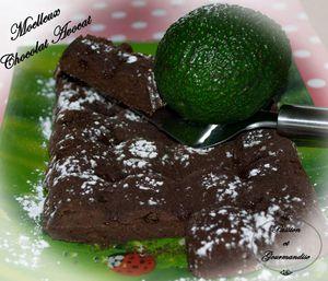 Moelleux Chocolat Avocat