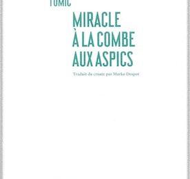 Ante Tomič: Miracle à la combe aux aspics.
