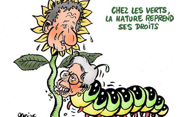 Présidentielle 2022 : Yannick Jadot et Sandrine Rousseau finalistes de la primaire écologiste