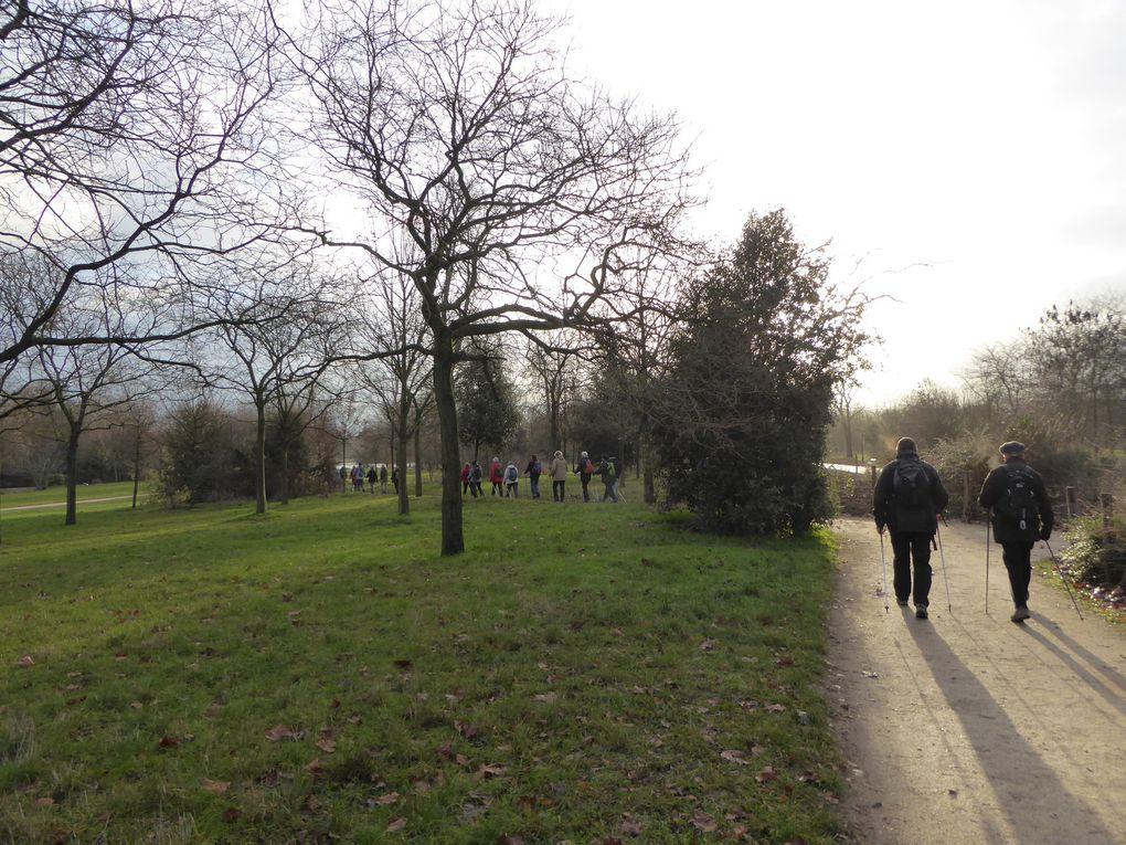 Marche nordique au Bois de Vincennes 7,5 km.