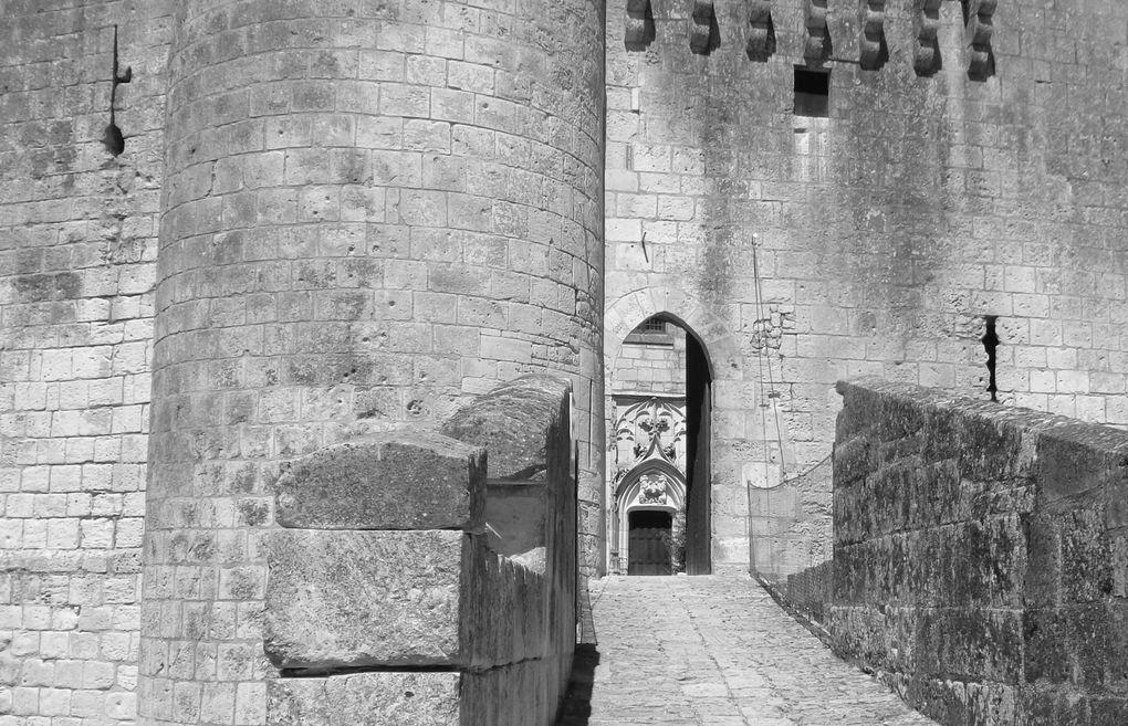 Des armoiries au culs de basse-fosse, en passant dans le chemin de ronde très bien conservé, aux douves, beaucoup de secrets sont encore à e à découvrir dans ce château fort auquel est accolé le logis du seigneur mais de construction plus récente. On dit aussi que l'esprit de Mélusine, même plus est dans les lieux... !