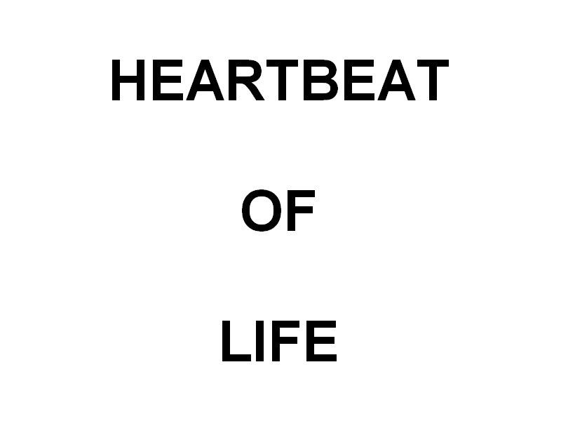 HEARTBEAT  OF  LIFE