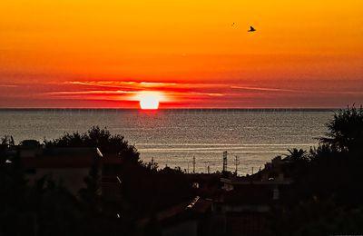 Premier soleil