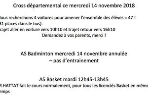 Cross / Badminton / Basket