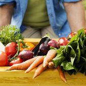 Manger plus pour se nourrir moins ou la ruine de l'alimentation et de l'agriculture moderne - Wikistrike