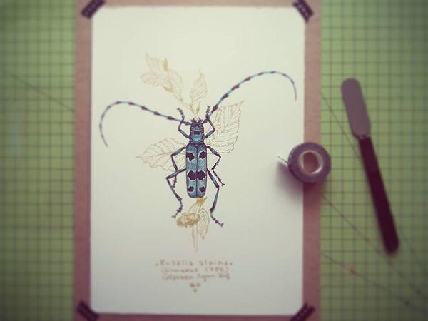 Rosalia alpina (gouache et encre sur papier aquarelle satiné 300gr) / Cabinet de Curiosités by Colpizen