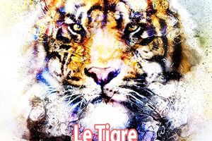 Le Tigre de la Destinée, Eve Terrellon, Ed. Amarante, collection Fleur d'Amarante, septembre 2017
