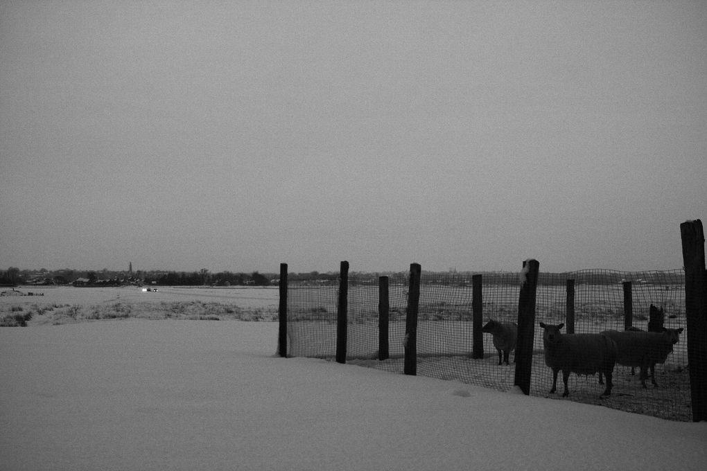 Album - Brehal--50---neiges-en-noir-et-blanc