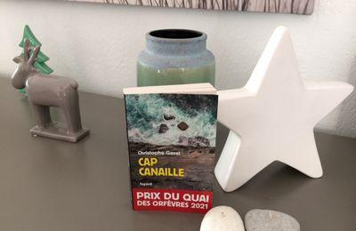 Cap Canaille de Christophe Gavat  (éditions Fayard )