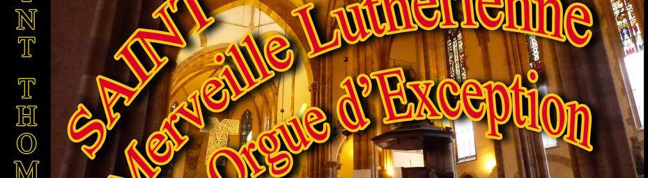 Cathédrale LUTHERIENNE SAINT THOMAS de STRASBOURG ( Alsace )