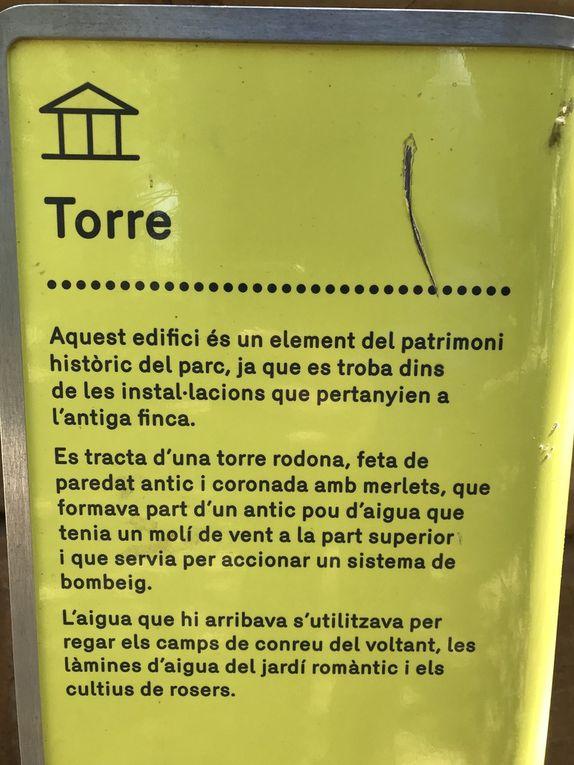 SMSP19 Environment Torreblanca Park