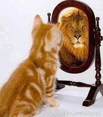 Louise Hay - El poder del espejo PDF - Transforma tu vida mirándote al espejo