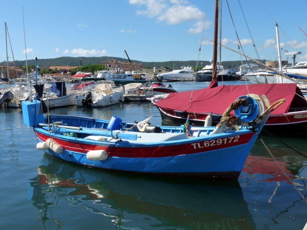 SAINTE DOLORES II  , TL629172 , dans le port de Saint Tropez le 21 septembre 2015