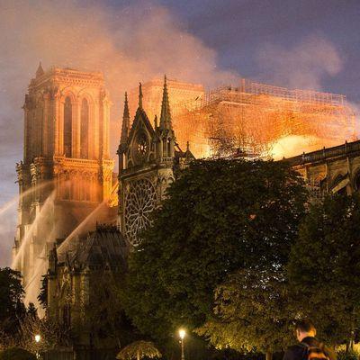 Le cri des pierres de Notre-Dame