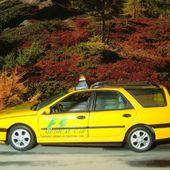 RENAULT LAGUNA ESTATE MEDICAL CAR GP F1 PORTUGAL 1996 VITESSE 1/43 - car-collector.net