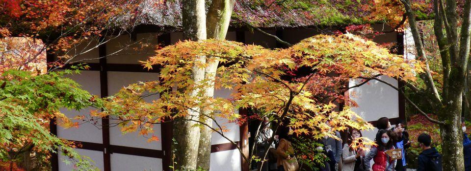 Kyôto: Arashiyama: Le temple Jôjakkô-ji 常寂光寺