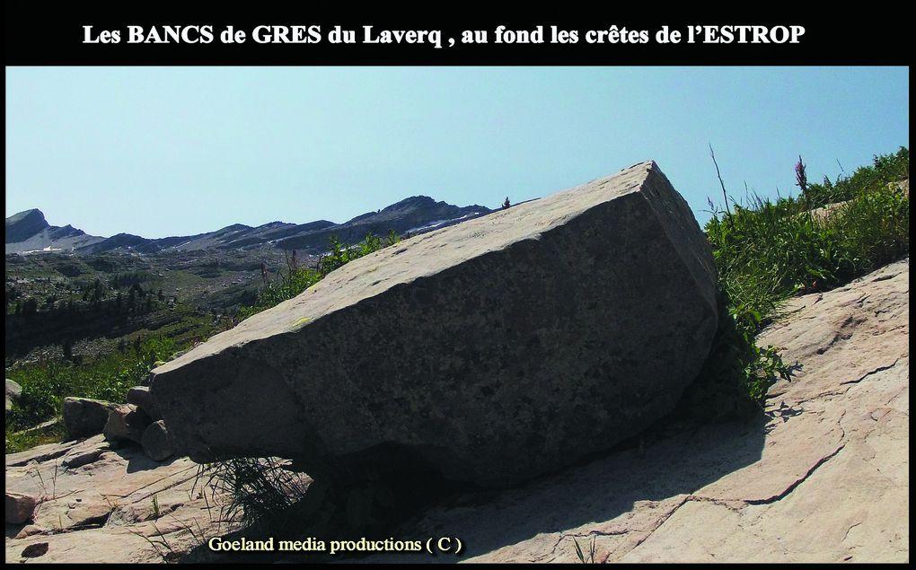Pour AGRANDIR les PHOTOS, CLIQUER DESSUS -- goelandmedia.prod@gmail.com (c)