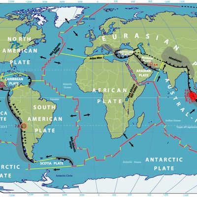 Sciences: Les mouvements de la croûte terrestre