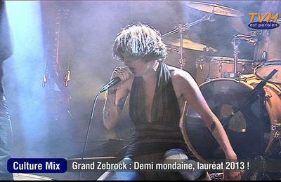 """""""Culture Mix"""" : Grand Zebrock 2013"""