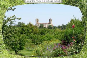 Les jardins de Coursiana...