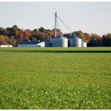 Farm Babe : Nous sommes des agriculteurs régénérateurs. Mais qu'est-ce que cela veut vraiment dire ?