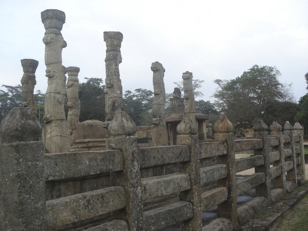Le Sri-Lanka : un voyage exceylan...