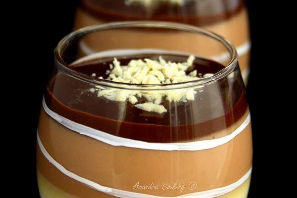 Panna cotta aux trois chocolats