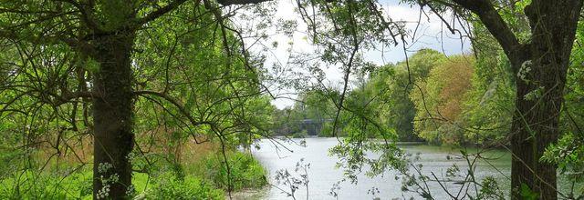 La vallée du Clain en habit vert