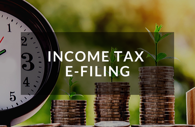 Income Tax Compliance and Consulting