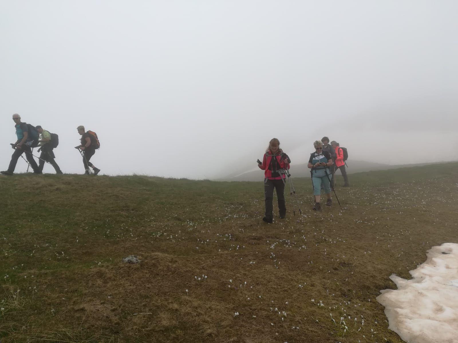 Le tour de la Grande montagne de Presle.