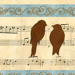 Birdsong for the morning