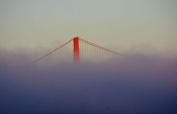 Etats Unis…San Francisco…Golden Gate Bridge