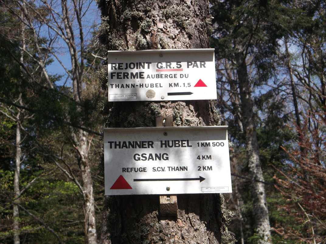 BOURBACH-LE-HAUT : LE GRAND TOUR DU ROSSBERG (R 420) - 18,6 km - D+ 808 m - 5 h - 4/6