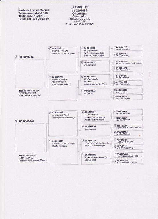 Album - Luc HERBOTS
