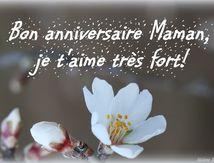 Bon anniversaire Maman!