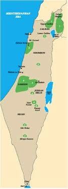 Viticulture in Israel