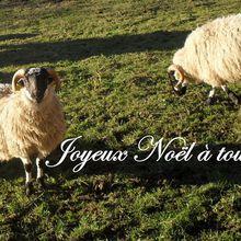 Joyeux Noël à tous! http://t.co/mopc0vbO3z...