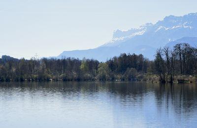 """Balade individuelle """"Lac de Saint Hélène"""""""