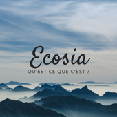 Physique Chimie Ecosia by camillemarie.maison on Genially