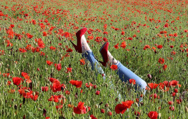 Chaussures rouges et coquelicots_37