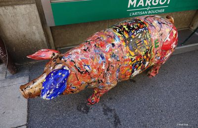 Un soir, une photo : le cochon de Margot...