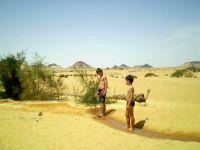 Bivouac dans le désert Egyptien